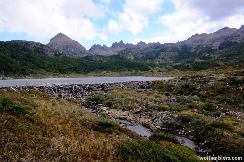 Beaver dam, Isla Navarino