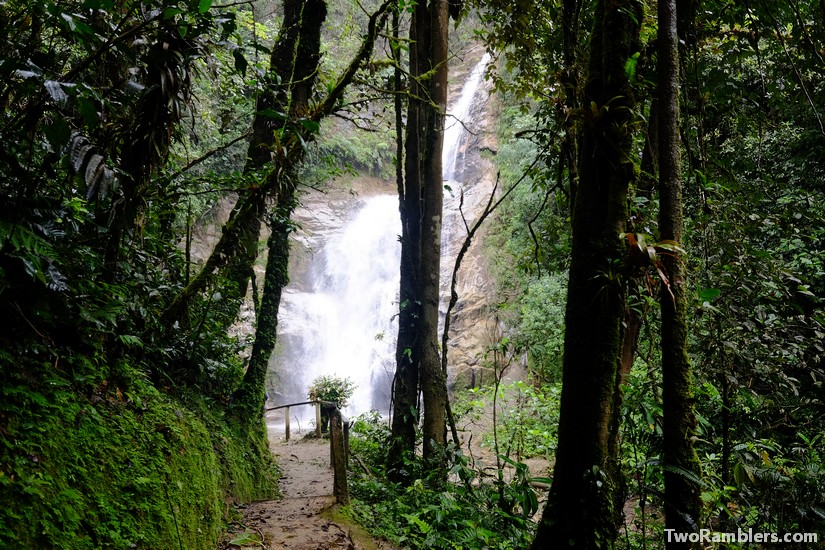 Waterfall, Podocarpus National Park, Ecuador