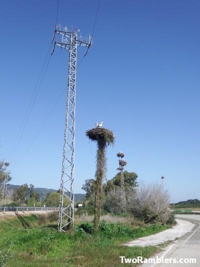 Stork nests, Andalucía