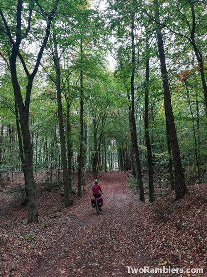 cycling next to Scharmützelsee